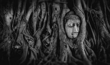 Les différents courants de bouddhisme