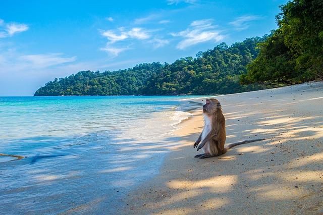 Meilleurs saisons pour partir en Thaïlande
