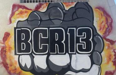 BCR 13