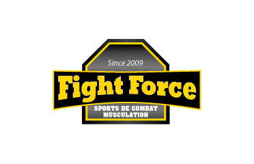 Fight Force