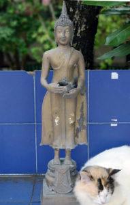 Signification bouddha du mercredi