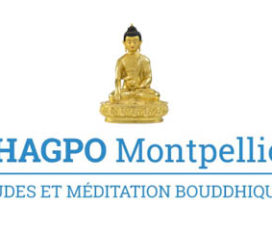 DHAGPO Montpellier