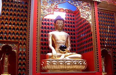 Dhagpo Tours