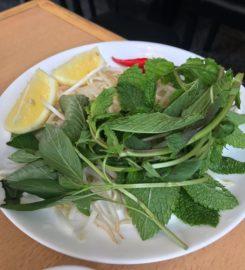 Le Phénix du Vietnam